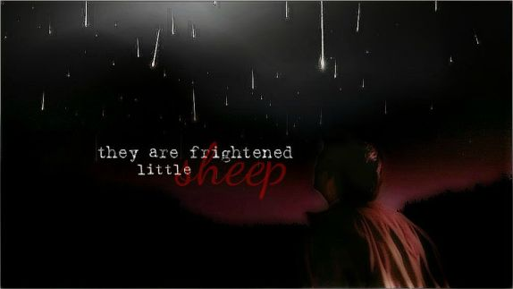 they are frightened little sheep part 2